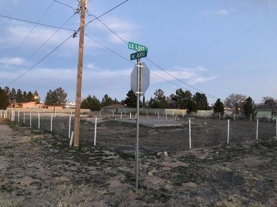 Socorro Single Family Home For Sale: 680 McAdoo Drive