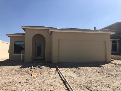 Horizon City Single Family Home For Sale: 13270 Emerald Isle Street