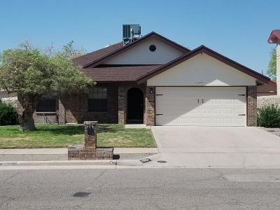 El Paso Single Family Home For Sale: 11607 James Grant Drive