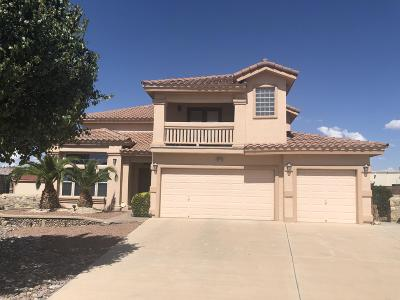 El Paso Single Family Home For Sale: 1095 Los Moros Drive