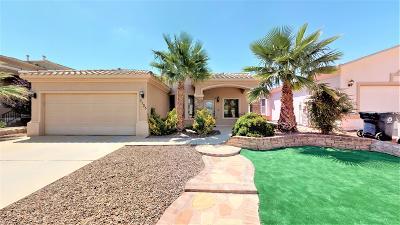 El Paso Single Family Home For Sale: 3135 Sunny Prairie Drive
