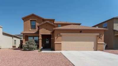 El Paso Single Family Home For Sale: 14625 Sunny Land Avenue