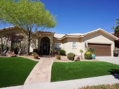 El Paso Rental For Rent: 1505 Cimarron Drive