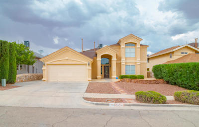 El Paso Single Family Home For Sale: 12529 Sun Empress Drive