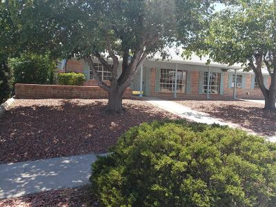 El Paso Single Family Home For Sale: 4504 Rhea Lane