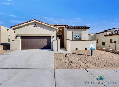 El Paso TX Single Family Home For Sale: $226,950