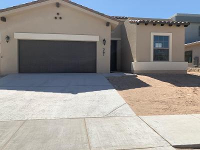 El Paso TX Single Family Home For Sale: $232,950