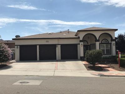 El Paso Single Family Home For Sale: 6304 Franklin Summit Drive