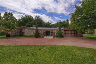 El Paso Single Family Home For Sale: 704 Wakefield Court