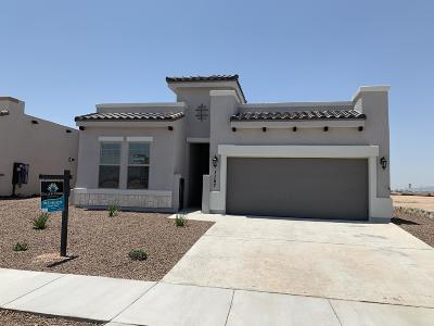 El Paso Single Family Home For Sale: 12853 Woolstone Drive