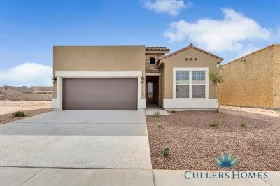 El Paso TX Single Family Home For Sale: $182,950