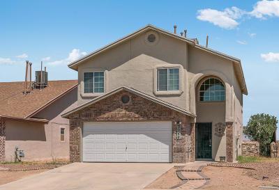 El Paso Single Family Home For Sale: 3740 Tierra Alamo Drive