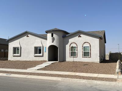 El Paso Single Family Home For Sale: 2864 Sammy Cervantes