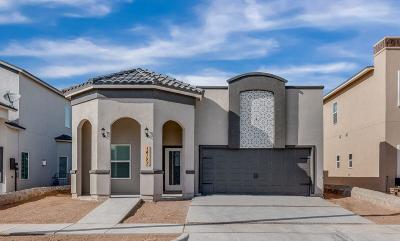 El Paso Single Family Home For Sale: 14921 Tierra Haven