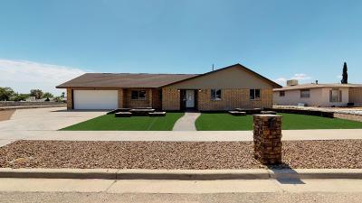 Single Family Home For Sale: 10540 Ashridge Drive