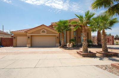 Canutillo Single Family Home For Sale: 600 Phil Hansen Drive