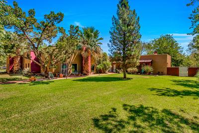 El Paso Single Family Home Active With Contingency: 5108 Camino De La Vista Drive