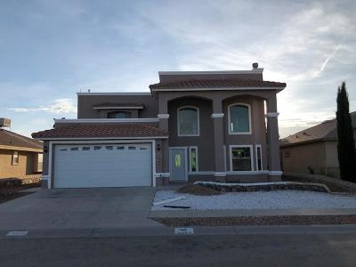 El Paso Single Family Home For Sale: 3057 Tierra Agave Drive