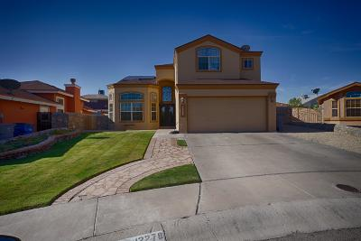 El Paso Single Family Home For Sale: 12278 Tierra Lago Way