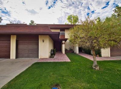 Single Family Home For Sale: 429 Irondale Drive #B