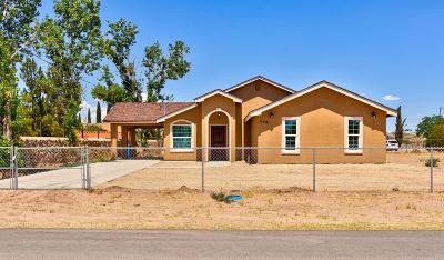 Socorro Single Family Home For Sale: 11291 Mark Mabon Court