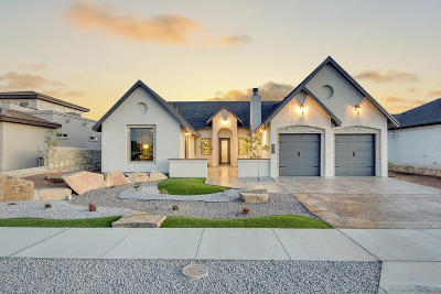 Single Family Home For Sale: 965 Pecos River Drive
