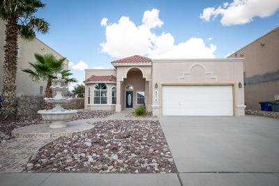El Paso Single Family Home For Sale: 2074 Sun Spur Way