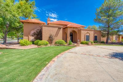 El Paso Single Family Home For Sale: 709 Rosinante