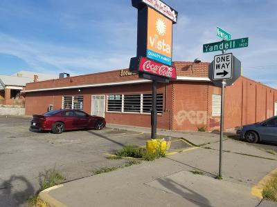 Commercial For Sale: 1400 Yandell Drive