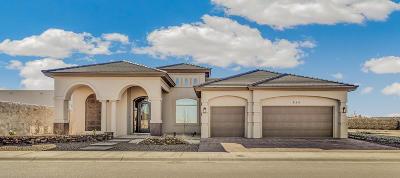 El Paso Single Family Home For Sale: 12272 Biddleston Drive