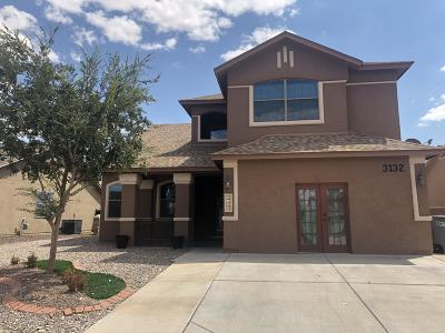 El Paso Single Family Home For Sale: 3132 Lookout Point Drive