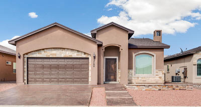 Sunland Park Single Family Home For Sale: 2780 San Antonio Drive