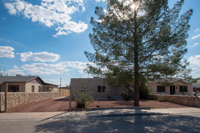 Single Family Home For Sale: 8542 Dorbandt Circle