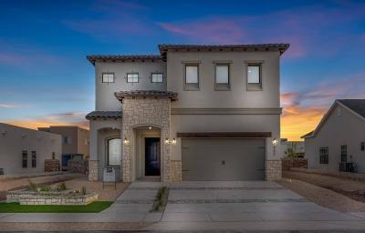 El Paso Single Family Home For Sale: 982 Selway River Place