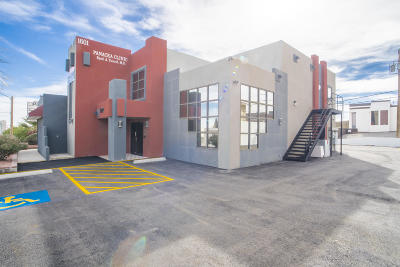 Commercial For Sale: 1601 N Mesa Street