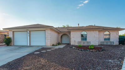 Single Family Home For Sale: 10717 Raindrop Way