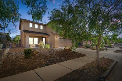 El Paso Single Family Home For Sale: 7365 Black Sage Drive