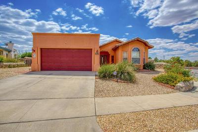 Single Family Home For Sale: 7296 Desert Eagle Drive