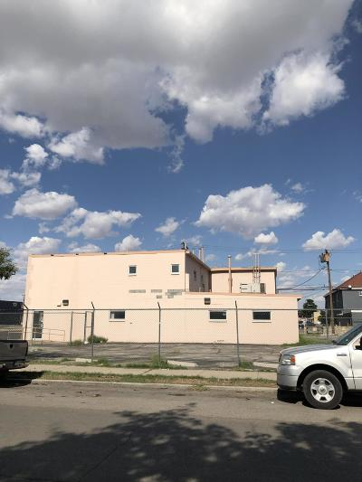 Commercial For Sale: 704 E Paisano Drive