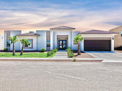 El Paso Single Family Home For Sale: 5808 Valley Palm Drive