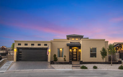 El Paso Single Family Home For Sale: 832 Carbine Drive