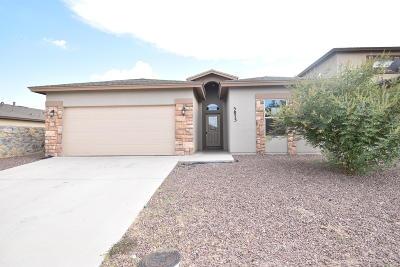 Sunland Park Single Family Home For Sale: 5873 Megan Street