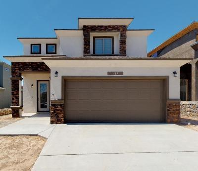 Single Family Home For Sale: 468 Prime Desert Drive