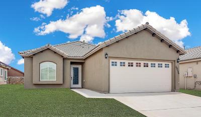 Horizon City Single Family Home For Sale: 13936 Flora Vista Avenue