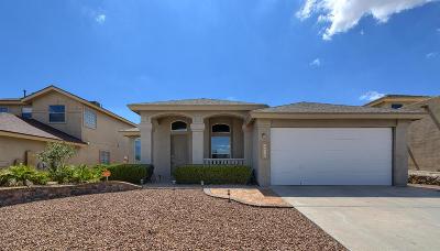 Horizon City Single Family Home For Sale: 13368 Emerald Creek Drive