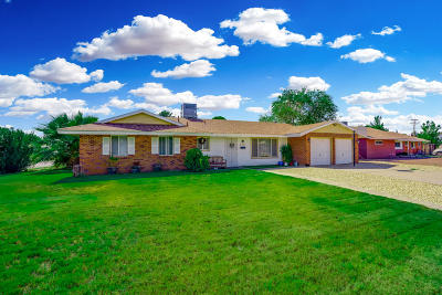 El Paso Single Family Home For Sale: 300 Bedford Road