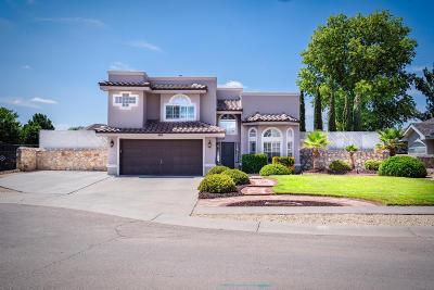 Horizon City Single Family Home For Sale: 493 Desert Rose Court
