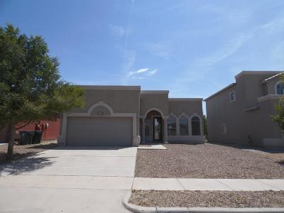 Single Family Home For Sale: 3174 Hidden Valley Drive