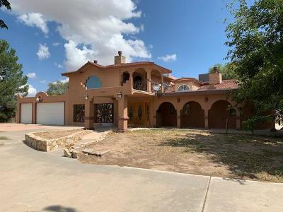 Single Family Home For Sale: 1295 S Clint San Elizario Road