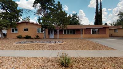 Single Family Home For Sale: 9800 Bermuda Avenue